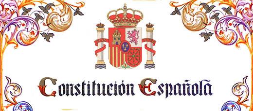 recurso-web-constitution